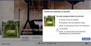 2016-06-05 21_09_53-(2) Huśtawki Ogrodowe - Internet Explorer